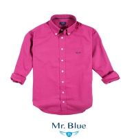 Mr. Blue Collection  2015