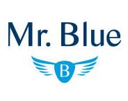 Mr. Blue Men Fashion